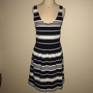 J.Crew Factory Navy and White Dress